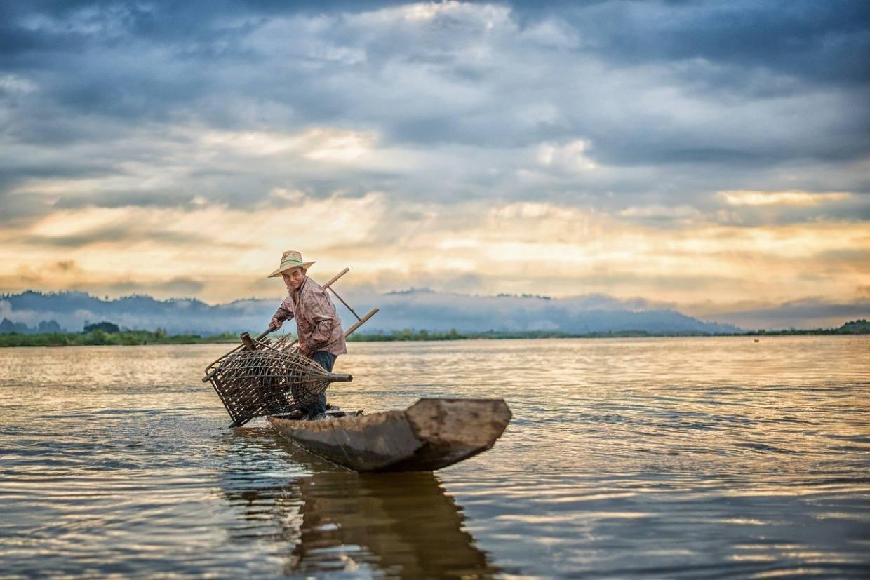 fisherman, fishing, fish-4305368.jpg