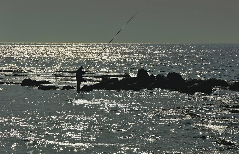 sea, water, angler-4253928.jpg