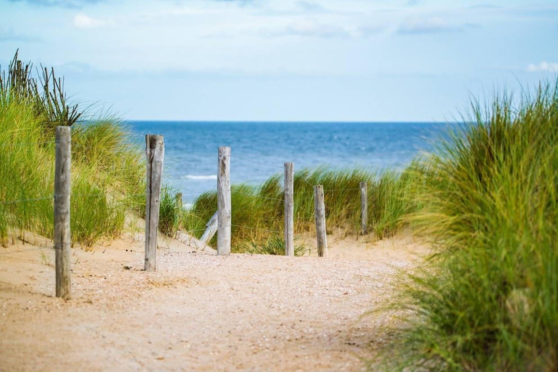 thin, sea, fence-2902686.jpg